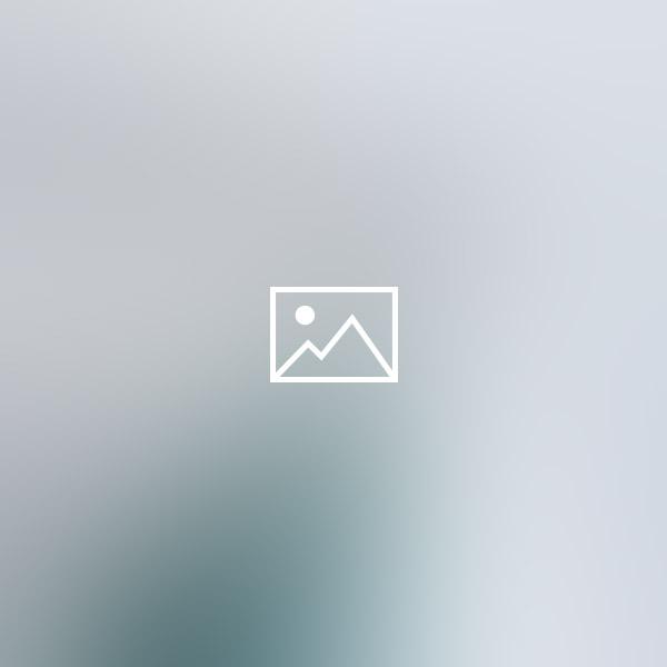 blog-dynamic-themes